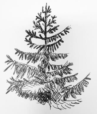 Träd tecknat med reservoirpenna