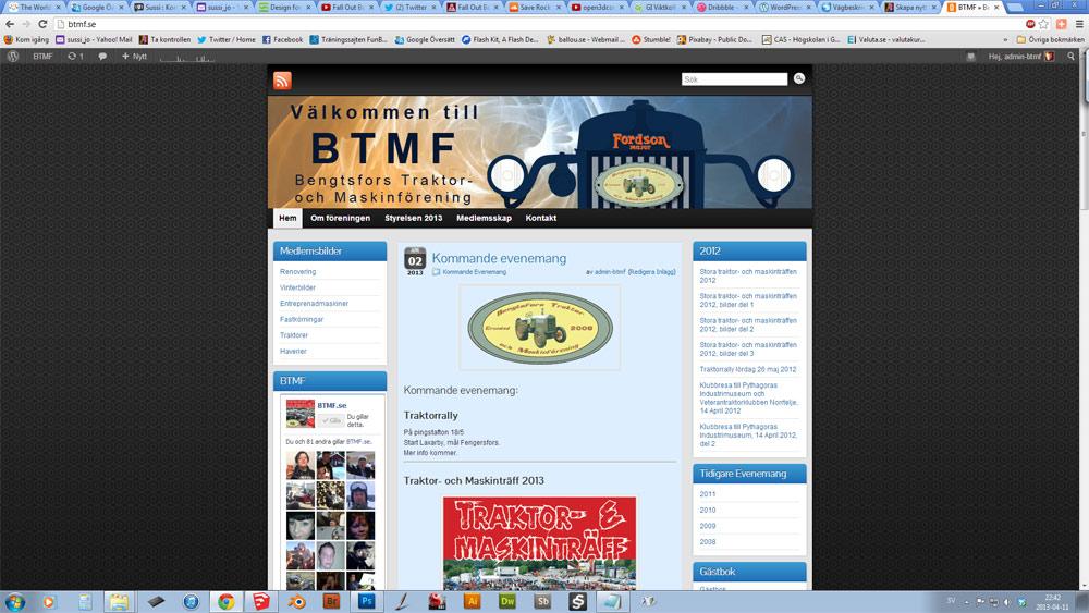 Btmf.se 2013